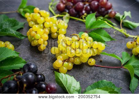 Bunch Of White Grapes And Other Sorts Of Berries, Green Leaves With Water Drops On The Dark Concrete