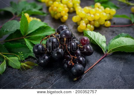 Close Up Bunch Of Black Grapes And Other Sorts Of Berries, Green Leaves With Water Drops On The Dark
