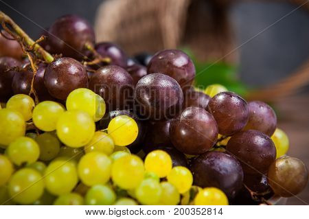 Close Up Various Grapes: Red, White And Black Berries On The Dark Wooden Table With Wicker Basket In