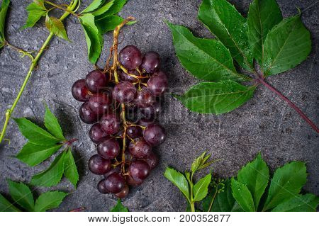 Top View Bunch Of Red Grapes And Green Leaves With Water Drops On The Dark Concrete Background. Sele