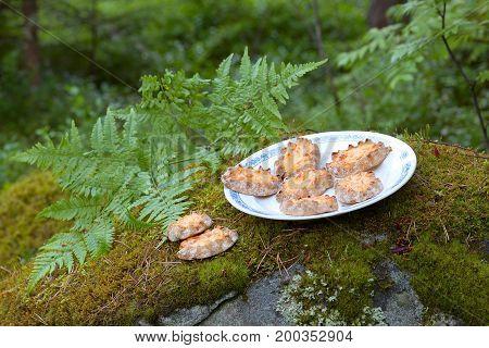 Karelian pasties- piirakka on a plate in the forest.