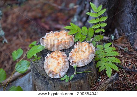 Karelian pasties- three pieces of piirakka on a tree stump.