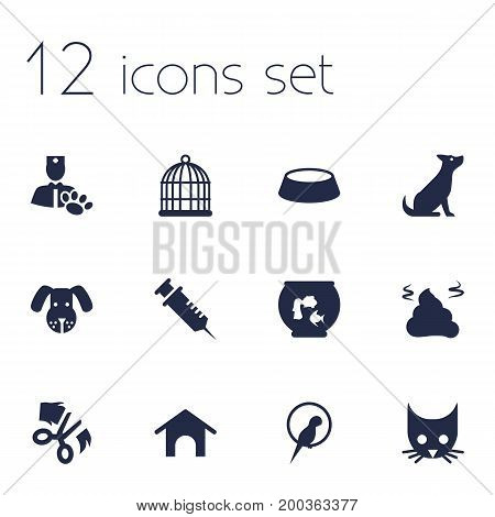 Collection Of Veterinarian, Head, Pile And Other Elements.  Set Of 12 Pets Icons Set.
