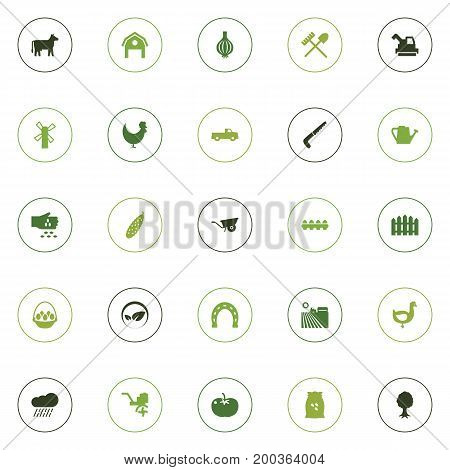 Collection Of Timber, Storehouse, Zucchini And Other Elements.  Set Of 25 Agricultural Icons Set.