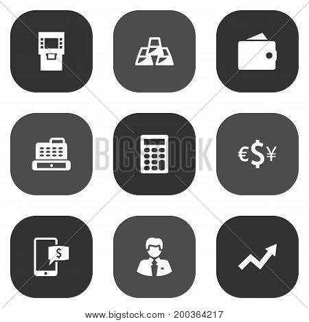 Collection Of Grown, Cashbox, Worker And Other Elements.  Set Of 9 Budget Icons Set.
