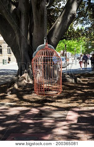 WESTERN AUSTRALIA, PERTH - NOVEMBER 2016: Two large hanging birdcages on a tree in Murray Street