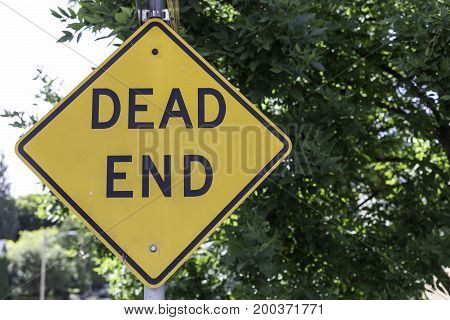 Dead end sign in front of a green street