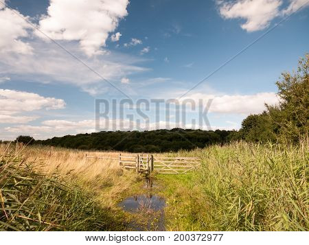 A Water Logged Country Walk Meadow Scene With Wooden Fence And Gate Blocked Blue Sky And Green Grass