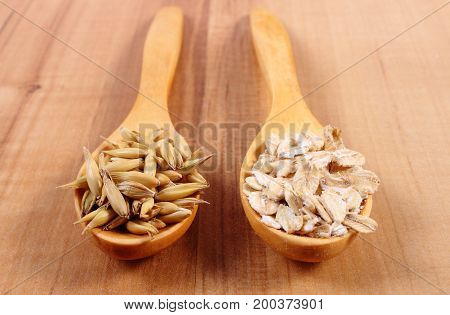 Organic Oat Grains And Oatmeal On Spoon, Healthy Nutrition