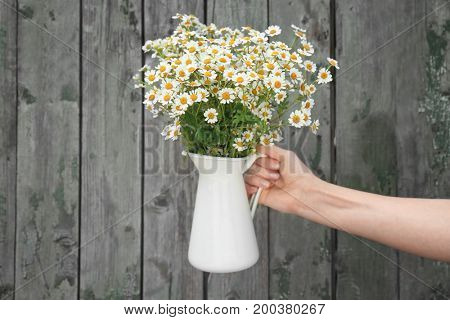 Woman's hand holding jug with beautiful chamomiles against wooden background