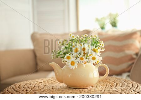 Beautiful chamomiles in small teapot on table