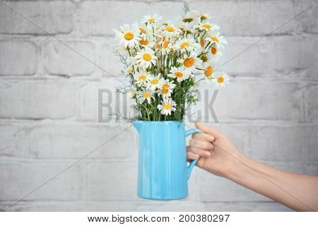 Woman's hand holding jug with beautiful chamomiles against brick wall