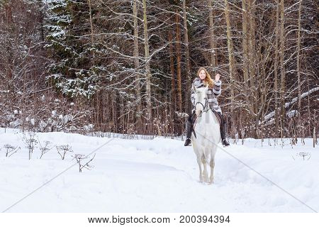 Nice Girl And White Horse Outdoor In A Winter