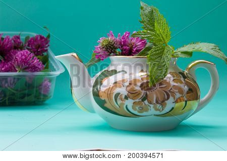 Teapot  With Clover, Garden Mint, Box With Fresh Red Clover On Green Bacground.