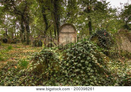 KOLIN CZECH REPUBLIC - SEPTEMBER 7 2008 - Old historical tombstones at the Old Jewish Cemetery in Kolin Czech Republic