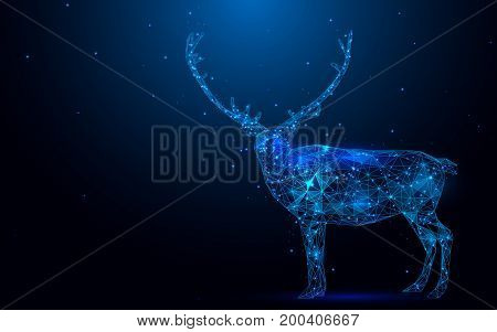 Low polygon reindeer wireframe mesh on blue background