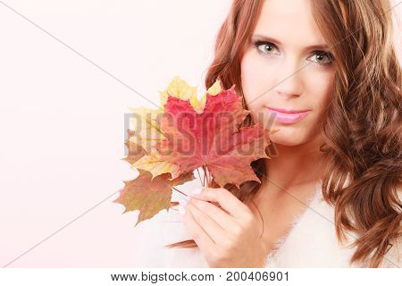 Beauty female autumn model. Lovely girl long hair with dry fall maple leaves in hand studio shot bright pink background