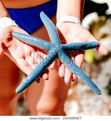 Blue starfish holding in woman hand Blue starfish found on the white coral sand beach in boracay philippines. ocean coast