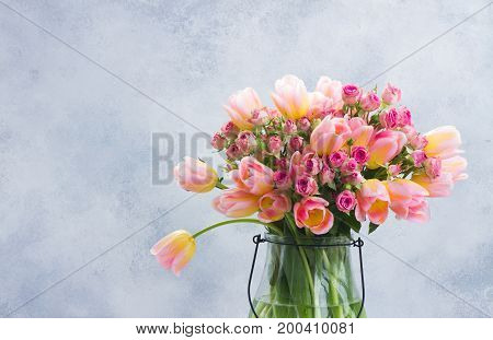 fresh pink and yellow tulips and roses in glass vase close up on gray background with copy space