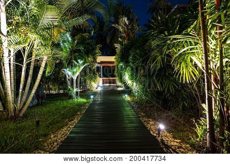 Night Lighting In Tropical Garden.
