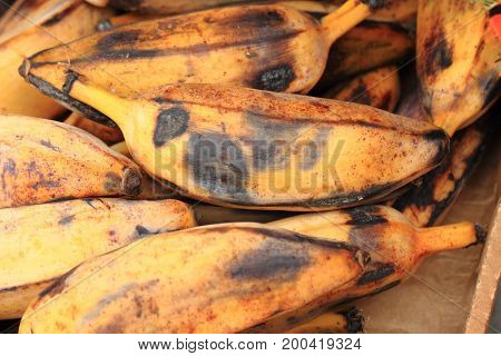 Banana Fruits From Africa