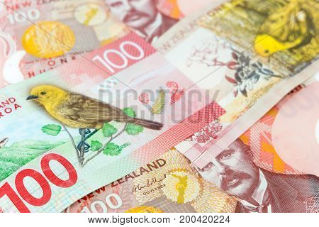 New Zealand currency Many of one hundred New Zealand dallar banknotes as money background.