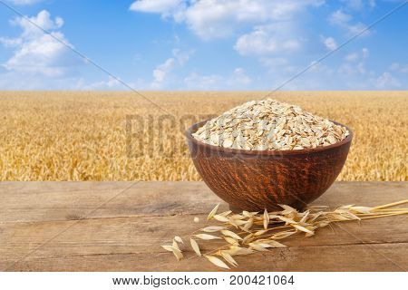 ears of oats and oatmeal in bowl on wooden table with field on the background. Ripe field, blue sky with beautiful clouds. Uncooked porridge