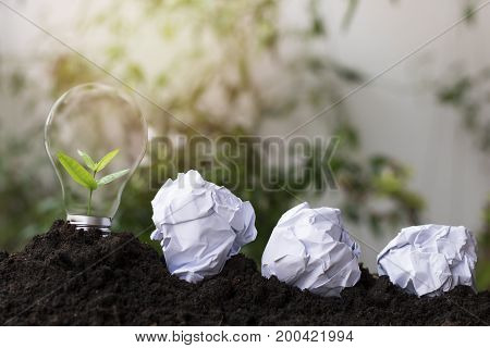 tree planting and growth up stacked on light bulb with soil on green and soft light sunny background concept in save World environment day reforesting eco bio arbor CSR ESG ecosystems reforestation concept