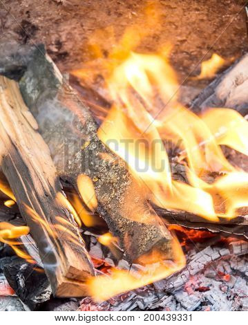 Burning firewood. Close up . Natural background.