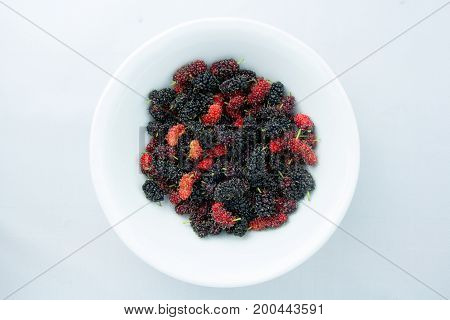 Mulberry or Black Mulberry with a sweet-sour taste. Clipping Paths Inside