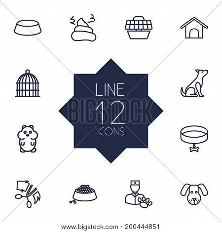 Collection Of Collar, Vet, Grooming And Other Elements.  Set Of 12 Pets Outline Icons Set.