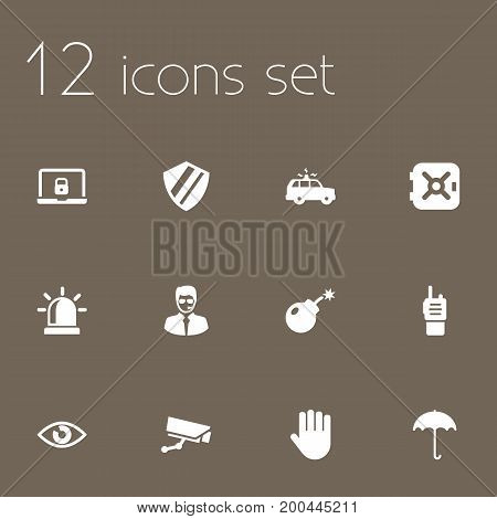 Collection Of Notebook, Surveillance, Strongbox And Other Elements.  Set Of 12 Procuring Icons Set.