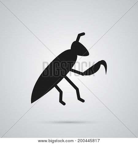 Vector Grasshopper Element In Trendy Style.  Isolated Mantis Icon Symbol On Clean Background.