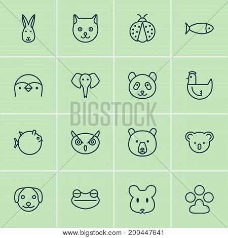 Zoology Icons Set. Collection Of Bunny, Grizzly, Kitten And Other Elements