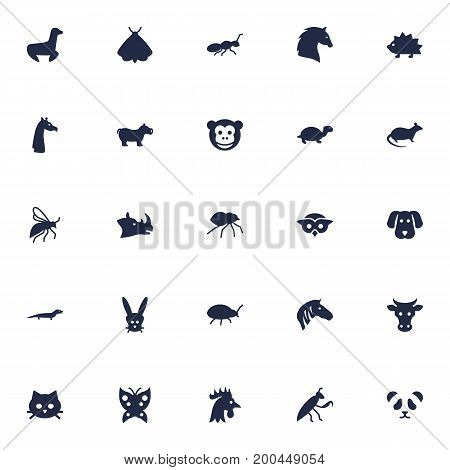Collection Of Rooster, Playful, Horse And Other Elements.  Set Of 25 Alive Icons Set.