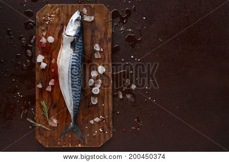 Fresh mackerel fish on wooden board at black background. Organic cooking ingredients for seafood restaurant. Top view, copy space