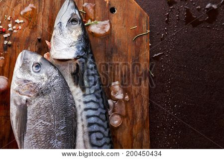 Seafood background. Fresh mackerel and dorado on wooden board on black table. Minimalistic mockup for fish market or restaurant. Top view, copy space