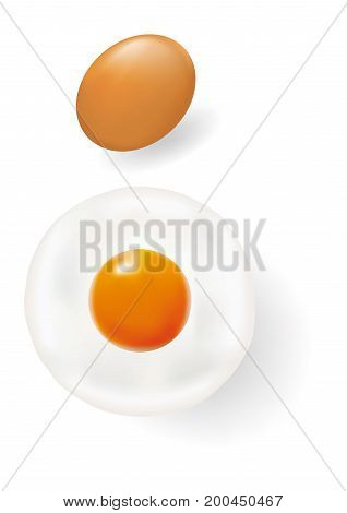 Egg and Fried egg isolated on white background EPS8