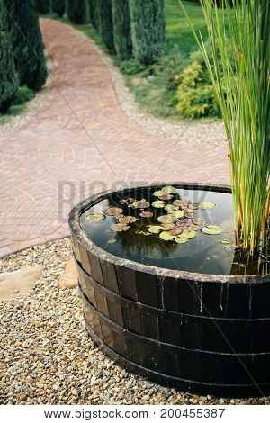 A barrel with water and flowering lilies against the background of a park walking area without people.