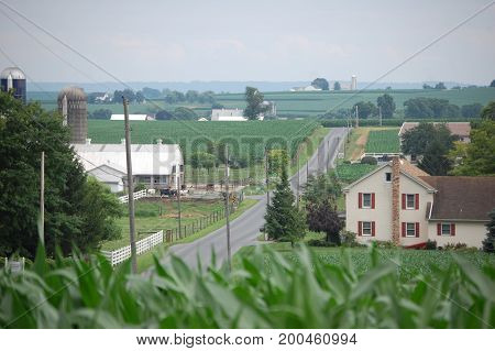 lancaster county farm with corn field in foreground