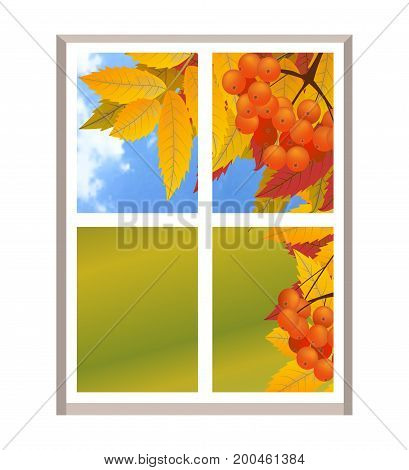Window with a landscape autumn view branch of rowan. Fall. Illustration over white background. Vector.