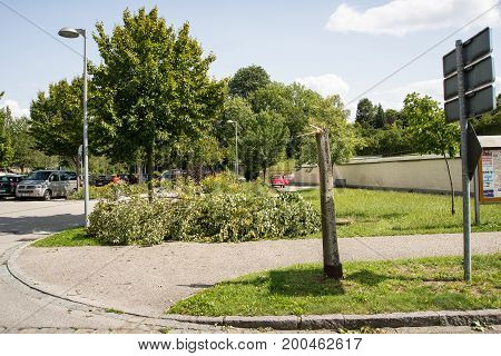 NeuoettingGermany-August 202017: A fallen tree lies by a sidewalk after a severe storm tore through the city two days earlier.