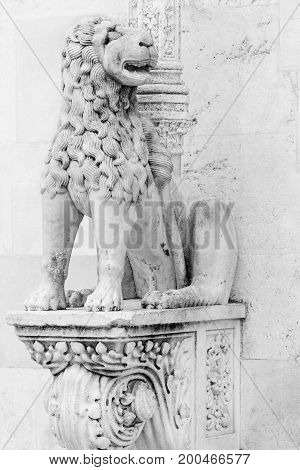 Lion statue at the gates of famous St. James cathedral in Sibenik, Croatia