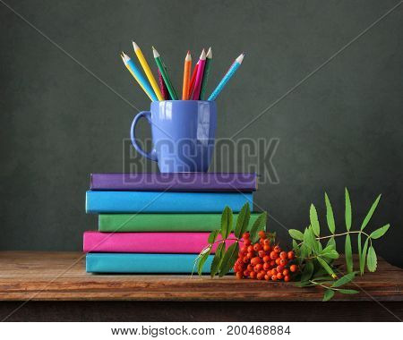 Back to school. Colored pencils textbooks and bunch of Rowan on the table. The teacher's day.