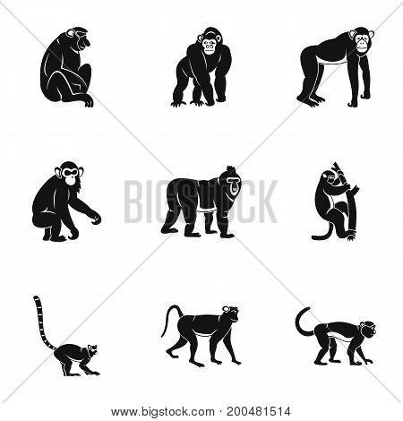 Monkey icon set. Simple set of 9 monkey vector icons for web isolated on white background
