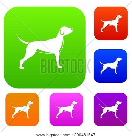 Dog set icon in different colors isolated vector illustration. Premium collection