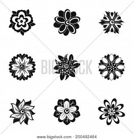 Flower icon set. Simple set of 9 flower vector icons for web isolated on white background