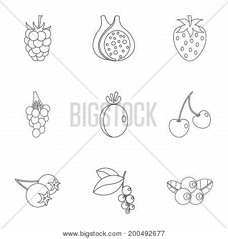 Berries icon set. Outline set of 9 berries vector icons for web isolated on white background