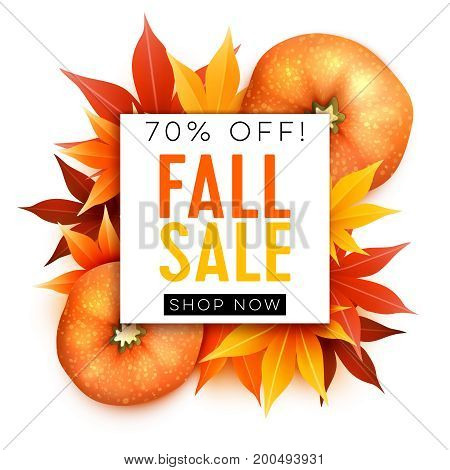 Fall sale. Realistic autumn maple leaves and pumpkin with text. Vector illustration isolated on white.