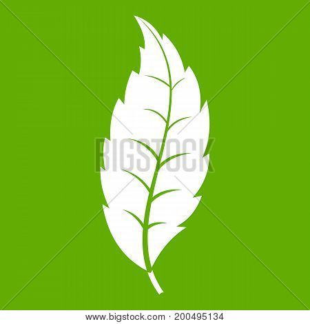 Narrow toothed leaf icon white isolated on green background. Vector illustration